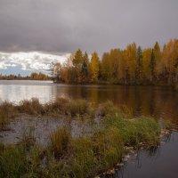 Осень.. :: Марат Шарипов