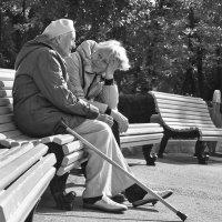 Бабушки, бабушки-старушки :: Сергей Бекетов