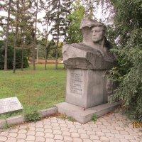 Памятник-венграм-бойцам интернац. отрядов :: раиса Орловская