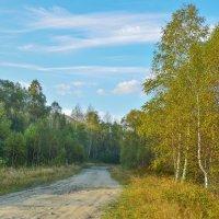 Дорога за деревню :: юрий Амосов
