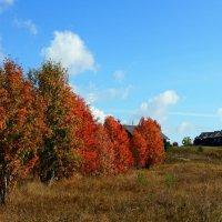 Осенним днем... :: Федор Кованский
