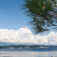 Пляж :: Yuliya Sav