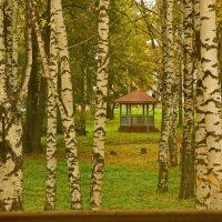 За окошком осень :: Валерий Симонов