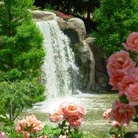 Водопад  среди роз :: Valentina Lujbimova [lotos 5]