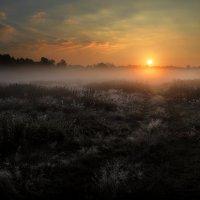 Сентябрьский рассвет...3. :: Андрей Войцехов