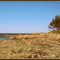U morja :: Daiga Megne
