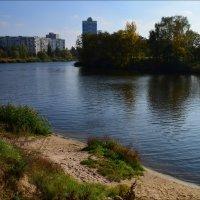 Городской водоём :: Татьяна Кретова