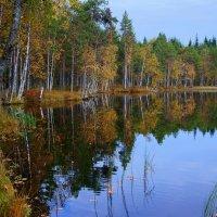 Озеро Чёрное... :: Федор Кованский