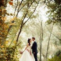 Свадебная осень :: Артем Воробьев