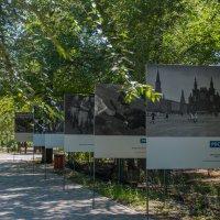 память о прошлом :: ILANA Gvozdievskaya