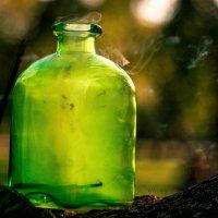 Ведьмин бутылек :: Зоя Голева