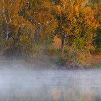 Берёзовый берег... :: Roman Lunin