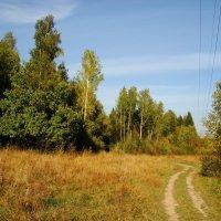 Еще немного тепла DSC08657 :: Андрей Лукьянов