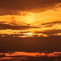 Лучи заходящего осеннего солнца. 02. :: Анатолий Клепешнёв
