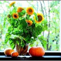 осенние дары на окне :: Svetlana AS