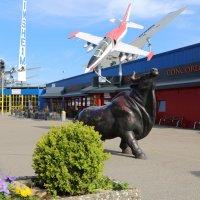Хочу летать! :: Сергей