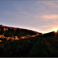 Закатный осенний свет :: galina tihonova