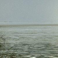 Весна, море :: Павел Гусев