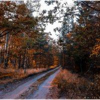 Осень :: Игорь Вишняков