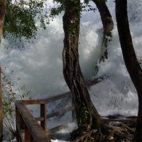 наводнение :: Oleg