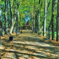 Осенний парк :: Андрей Куприянов