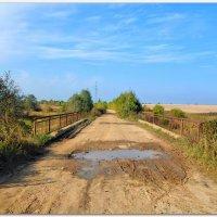 Мост на проселочной дороге. :: Vadim WadimS67