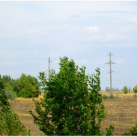 Сентябрь на донской земле... :: Тамара (st.tamara)