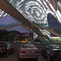 Тбилиси. Мост Мира. :: Елена Жукова