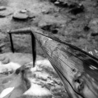 дерево отполировано руками :: Галина Юдина