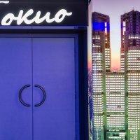 Дверь в Токио :: Людмила Финкель