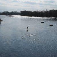Рыбалка на реке авача, Камчатка. :: Олег Романенко