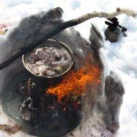 Уха в снегу :: Олег Романенко