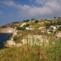 На юге острова Искья :: Suzdaleva Ekaterina Суздалева
