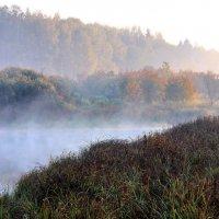Осенний туман похож на обман... :: Лесо-Вед (Баранов)