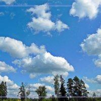 Облака (вот, как-то так...) :: Елена Федотова