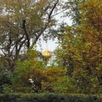 Городские зарисовки. Краски осени. Пасмурно. :: Геннадий Александрович