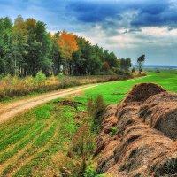 Осенний пейзаж :: Андрей Куприянов