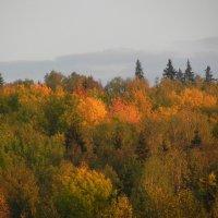 осень :: Сергей Макеров