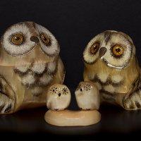 Селенитовые совы :: АлеКсей Балашовъ
