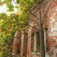 Старые стены. :: Лилия Гудкова