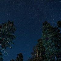 Звездная ночь в горах :: Николай Сороколатов