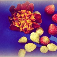 Осень с ароматом клубники :: galina tihonova
