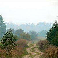 Дорога в Осень. :: Екатерина Артамонова
