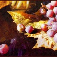 Осенний виноград. :: Елена Прихожай