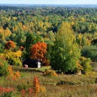 Осень на Цыпиной горе :: Михаил Валюженич