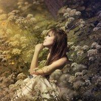 Сказочный лес :: Фотохудожник Наталья Смирнова