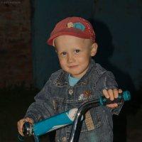 Би-Бип !!! :: Алексей Масалов