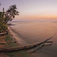 Куршский залив, утро :: Владимир Самсонов