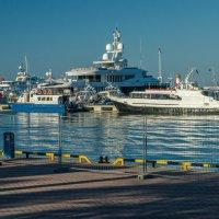 Морской порт в Сочи. :: Олег Козлов
