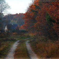 Осень в деревне :: Дмитрий Лебедихин
